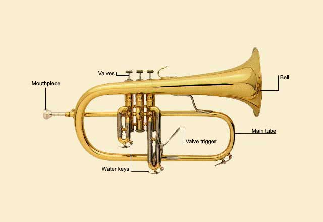 picture of Flugelhorn