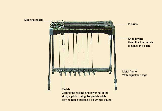 picture of Guitar, Pedal Steel