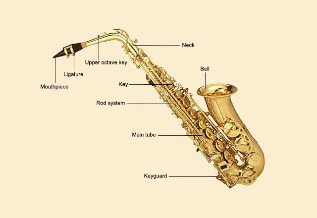 picture of Saxophone, Alto
