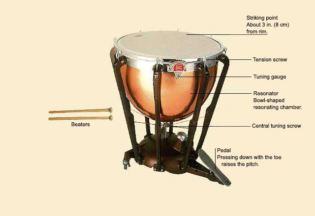 picture of Timpani