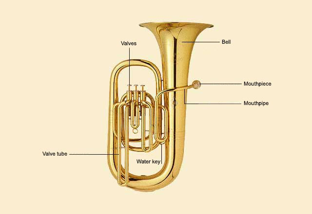 picture of Tuba